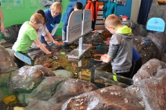 Indoor Tide Pool Touch Tank